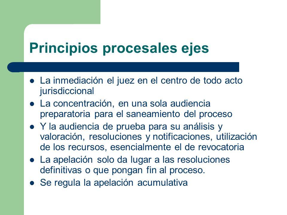 Principios procesales ejes La inmediación el juez en el centro de todo acto jurisdiccional La concentración, en una sola audiencia preparatoria para e