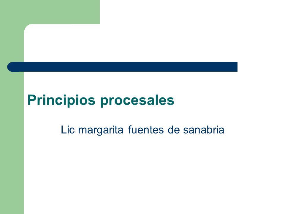 Principios procesales Lic margarita fuentes de sanabria