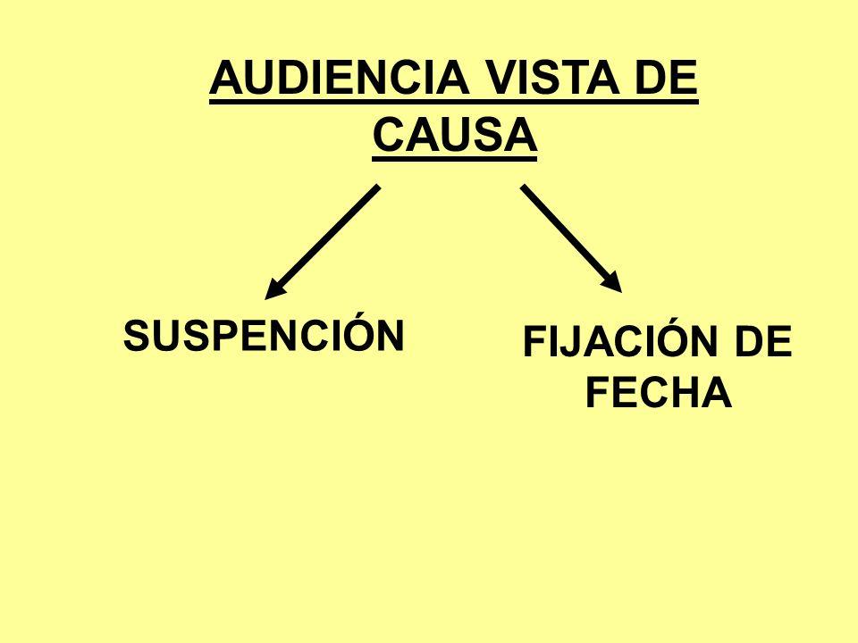 AUDIENCIA VISTA DE CAUSA SUSPENCIÓN FIJACIÓN DE FECHA