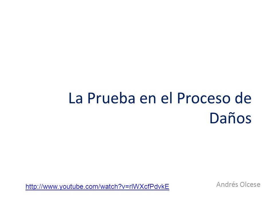La Prueba en el Proceso de Daños Andrés Olcese http://www.youtube.com/watch?v=rlWXcfPdvkE