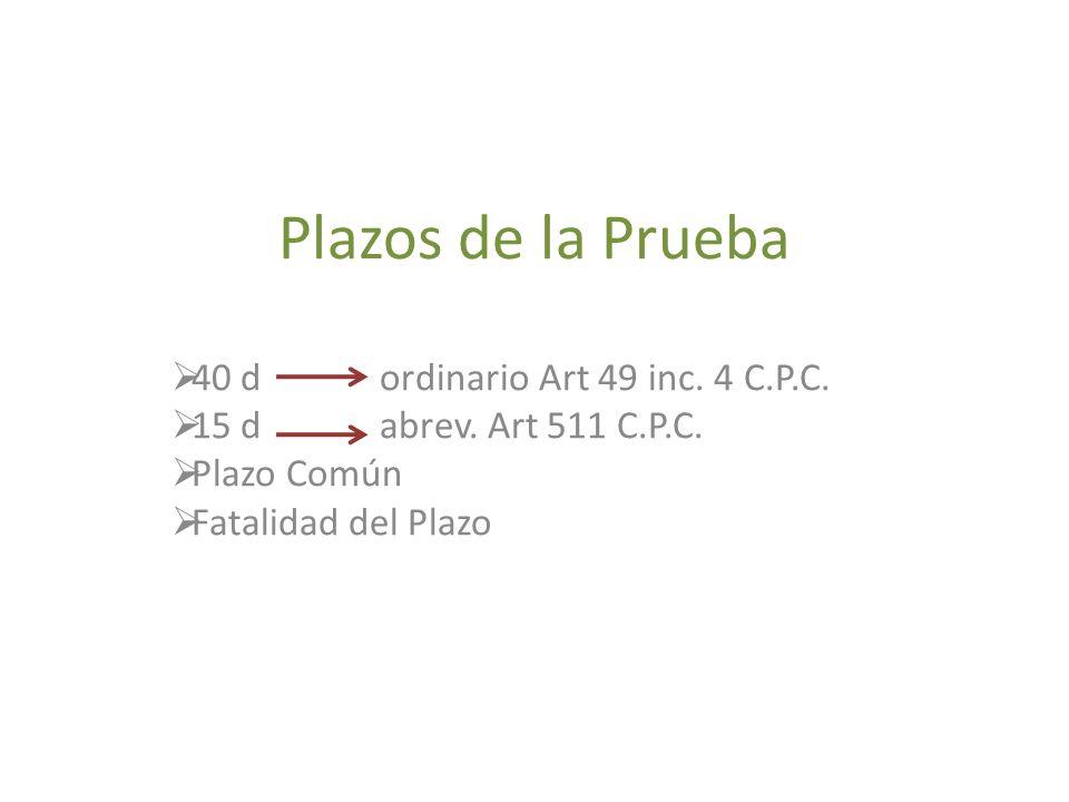 Plazos de la Prueba 40 d ordinario Art 49 inc.4 C.P.C.