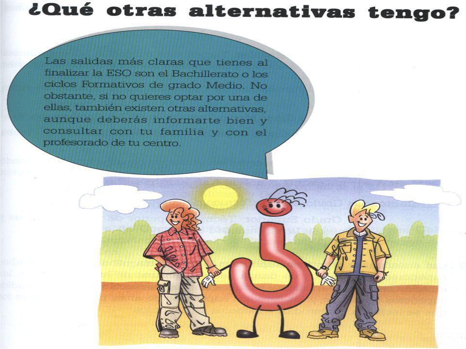 ORGANIZACIÓN: –Dos niveles: CICLO FORMATIVO DE GRADO MEDIO.