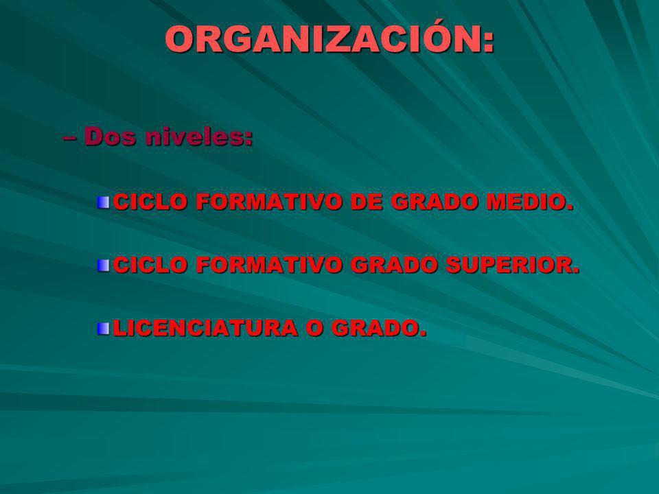 ORGANIZACIÓN: –Dos niveles: CICLO FORMATIVO DE GRADO MEDIO. CICLO FORMATIVO GRADO SUPERIOR. LICENCIATURA O GRADO.