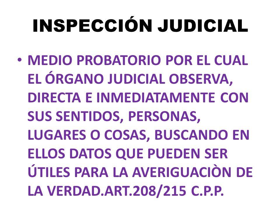 INSPECCIÓN JUDICIAL MEDIO PROBATORIO POR EL CUAL EL ÓRGANO JUDICIAL OBSERVA, DIRECTA E INMEDIATAMENTE CON SUS SENTIDOS, PERSONAS, LUGARES O COSAS, BUS