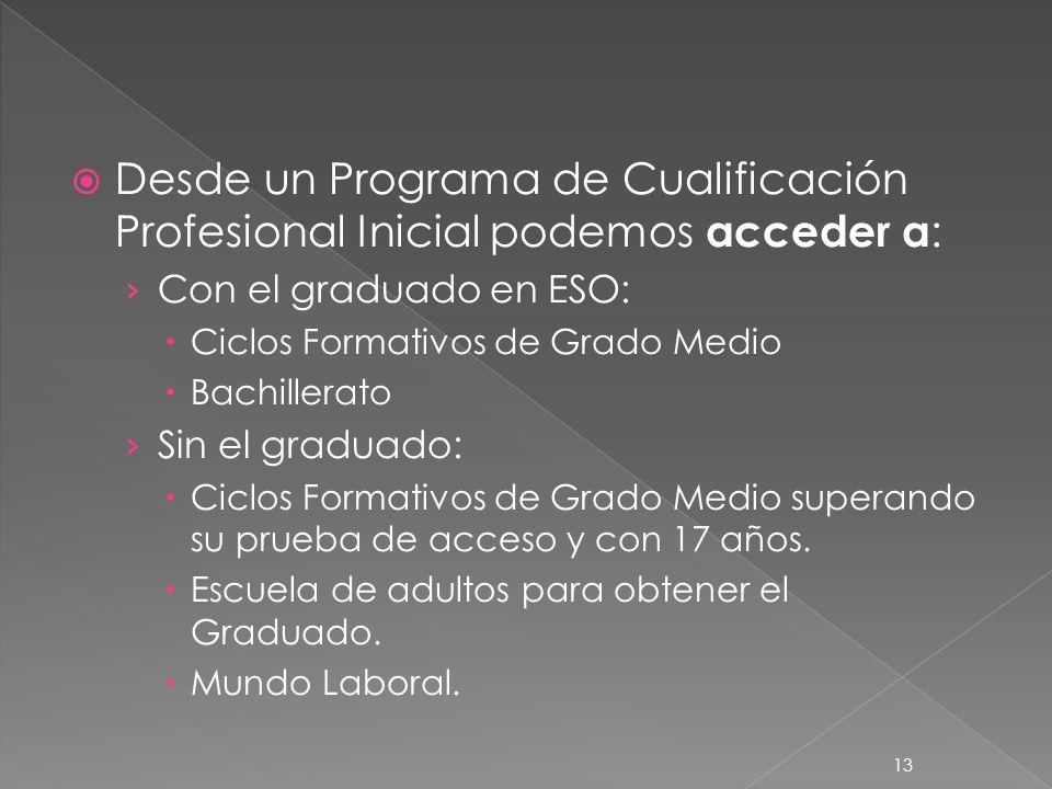 13 Desde un Programa de Cualificación Profesional Inicial podemos acceder a : Con el graduado en ESO: Ciclos Formativos de Grado Medio Bachillerato Si