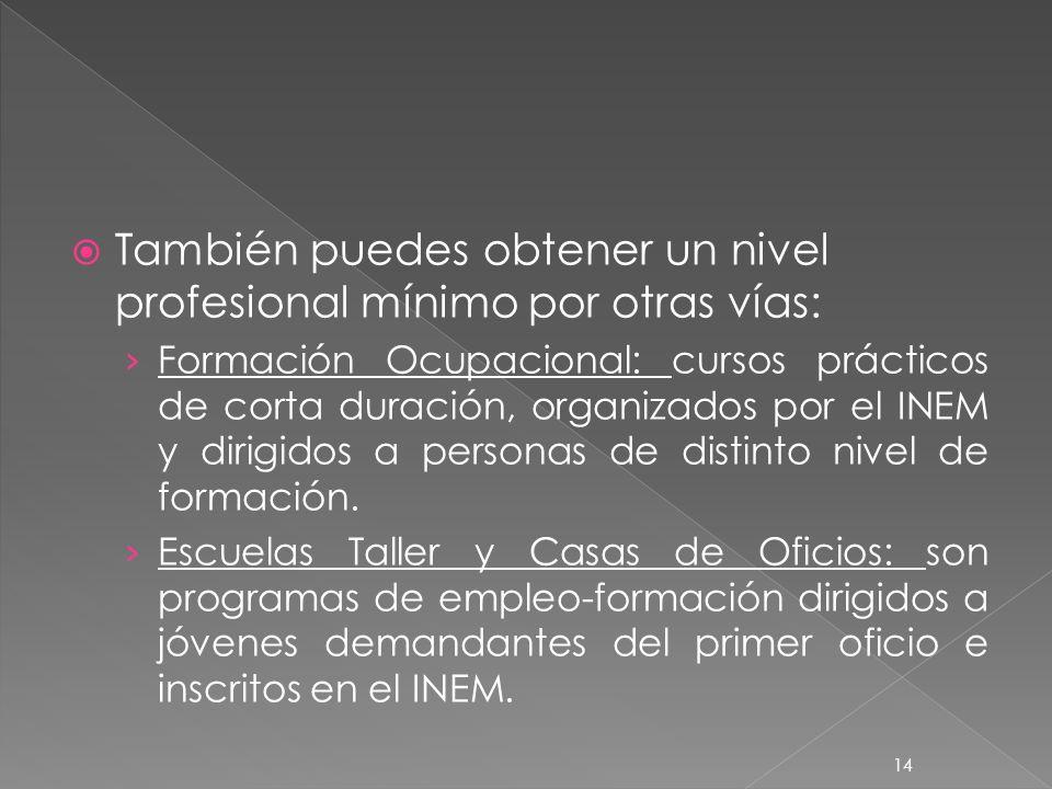 También puedes obtener un nivel profesional mínimo por otras vías: Formación Ocupacional: cursos prácticos de corta duración, organizados por el INEM