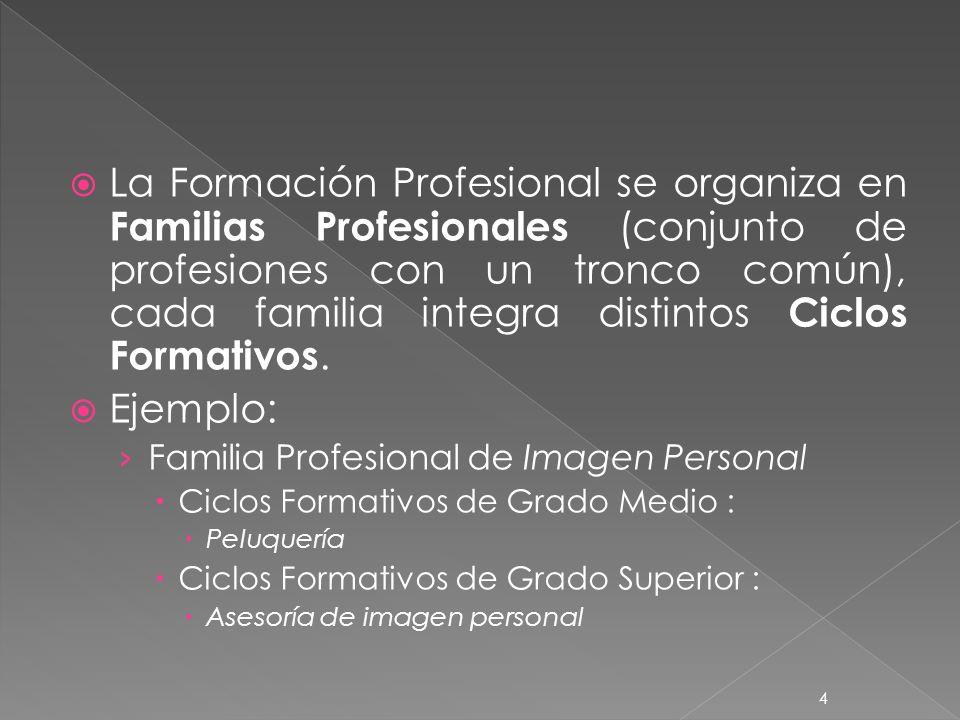4 La Formación Profesional se organiza en Familias Profesionales (conjunto de profesiones con un tronco común), cada familia integra distintos Ciclos