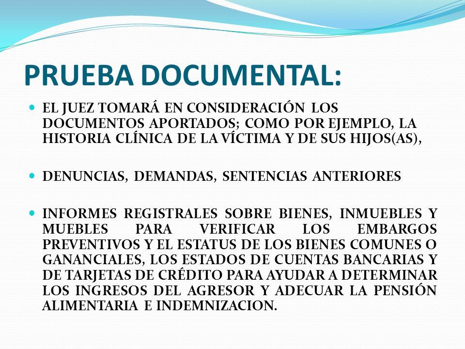 PRUEBA DOCUMENTAL: EL JUEZ TOMARÁ EN CONSIDERACIÓN LOS DOCUMENTOS APORTADOS; COMO POR EJEMPLO, LA HISTORIA CLÍNICA DE LA VÍCTIMA Y DE SUS HIJOS(AS), D
