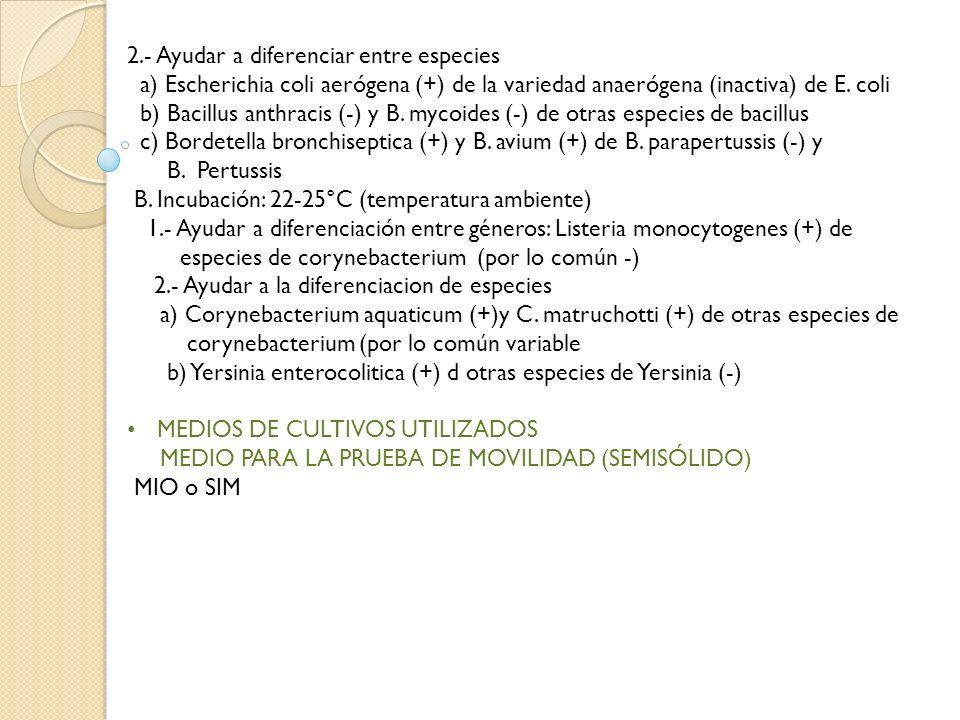 2.- Ayudar a diferenciar entre especies a) Escherichia coli aerógena (+) de la variedad anaerógena (inactiva) de E. coli b) Bacillus anthracis (-) y B