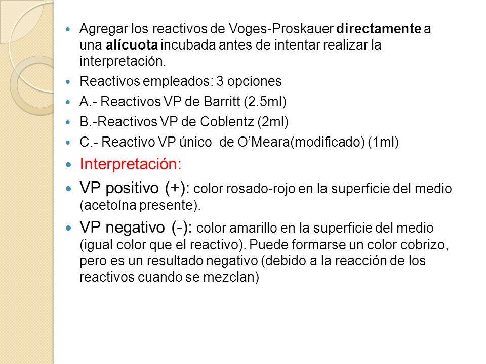 Agregar los reactivos de Voges-Proskauer directamente a una alícuota incubada antes de intentar realizar la interpretación. Reactivos empleados: 3 opc