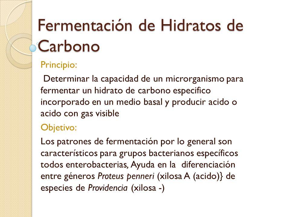 Fermentación de Hidratos de Carbono Principio: Determinar la capacidad de un microrganismo para fermentar un hidrato de carbono especifico incorporado
