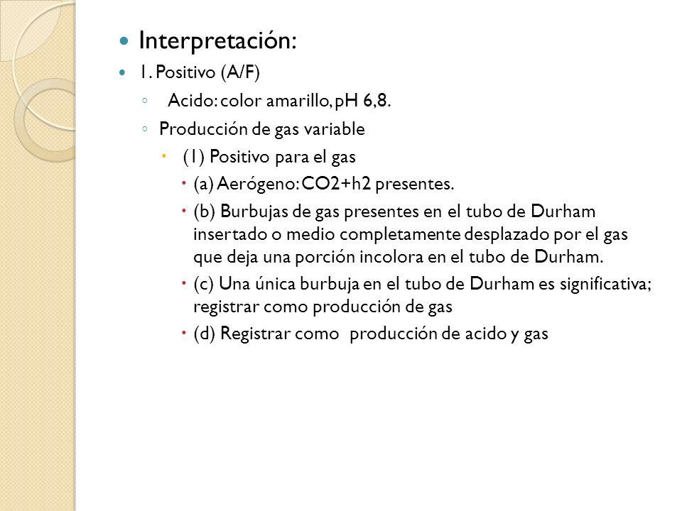 Interpretación: 1. Positivo (A/F) Acido: color amarillo, pH 6,8. Producción de gas variable (1) Positivo para el gas (a) Aerógeno: CO2+h2 presentes. (