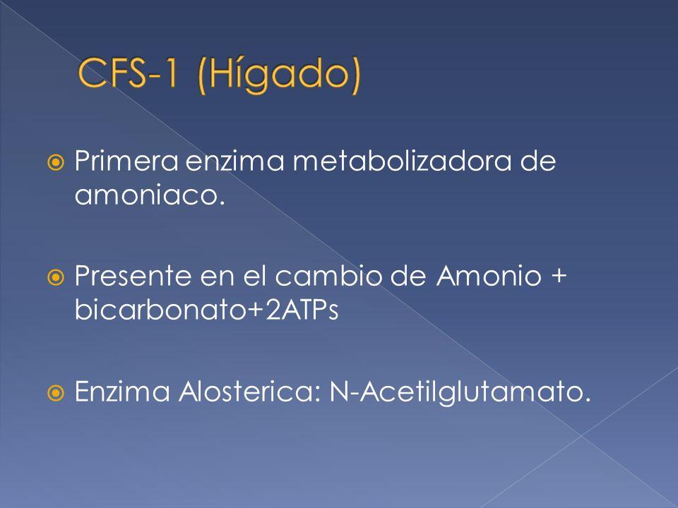 Primera enzima metabolizadora de amoniaco. Presente en el cambio de Amonio + bicarbonato+2ATPs Enzima Alosterica: N-Acetilglutamato.