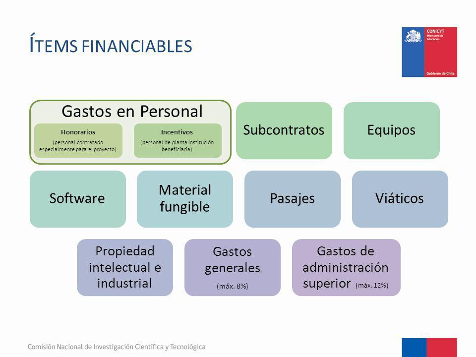 Í TEMS FINANCIABLES Honorarios (personal contratado especialmente para el proyecto) Incentivos (personal de planta institución beneficiaria) Subcontra