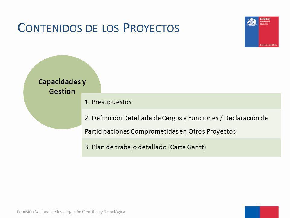 C ONTENIDOS DE LOS P ROYECTOS Capacidades y Gestión 1. Presupuestos 2. Definición Detallada de Cargos y Funciones / Declaración de Participaciones Com