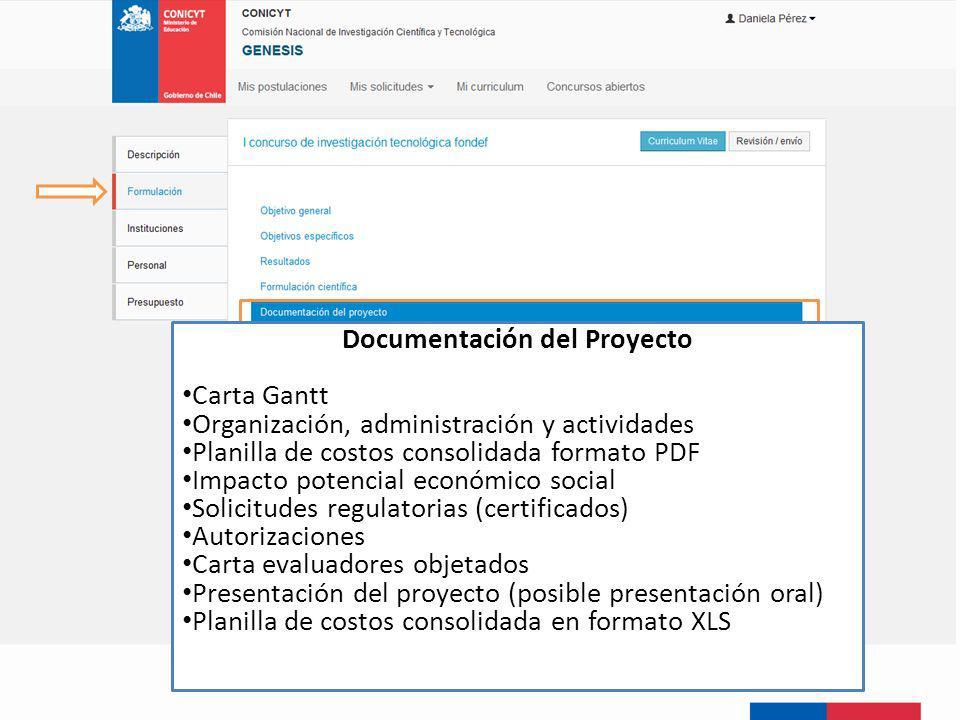 Documentación del Proyecto Carta Gantt Organización, administración y actividades Planilla de costos consolidada formato PDF Impacto potencial económi