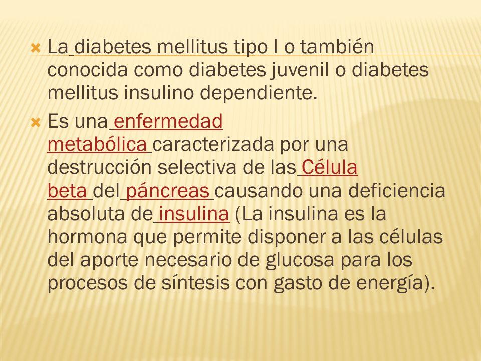 La diabetes mellitus tipo I o también conocida como diabetes juvenil o diabetes mellitus insulino dependiente. Es una enfermedad metabólica caracteriz