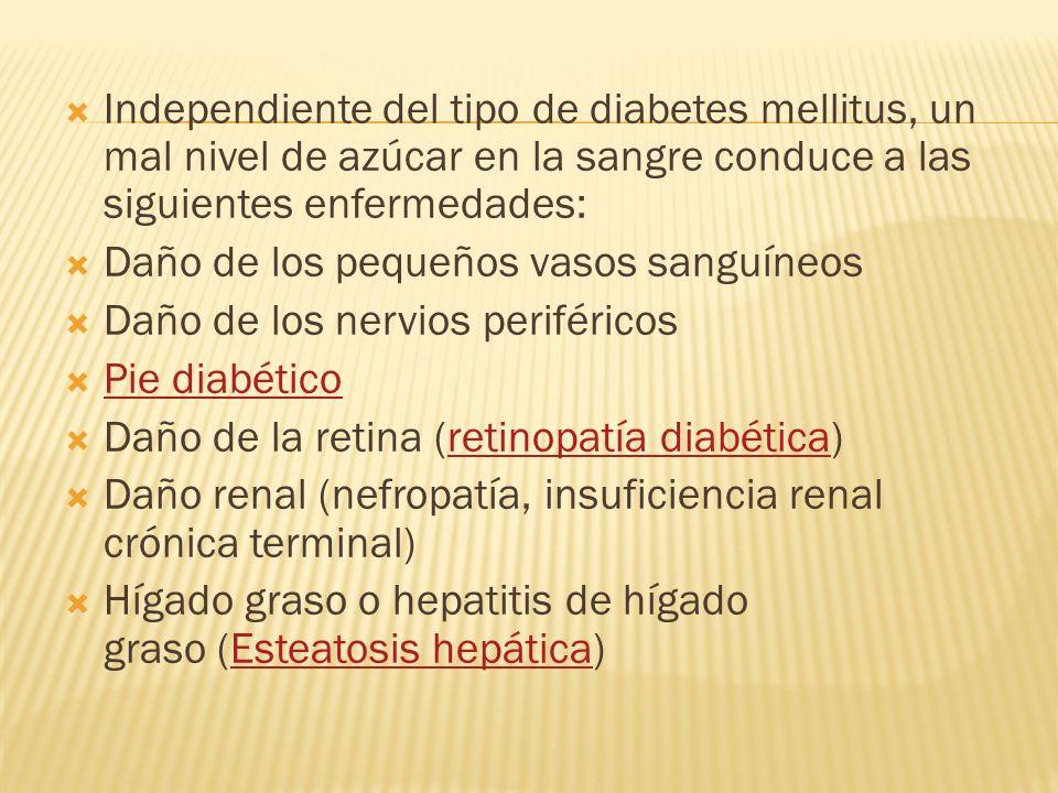 Independiente del tipo de diabetes mellitus, un mal nivel de azúcar en la sangre conduce a las siguientes enfermedades: Daño de los pequeños vasos san