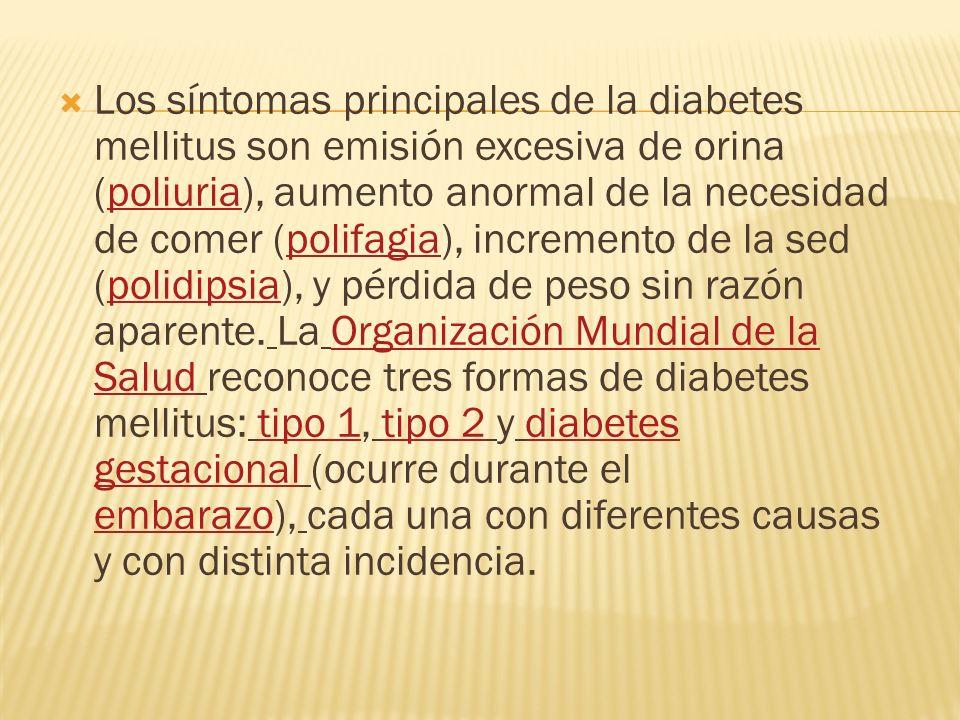 Los síntomas principales de la diabetes mellitus son emisión excesiva de orina (poliuria), aumento anormal de la necesidad de comer (polifagia), incre