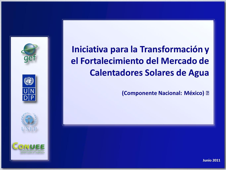 Programa de las Naciones Unidas para el Desarrollo Iniciativa de Transformación y Fortalecimiento del Mercado de Calentadores Solares de Agua Actores locales y regionales ITFMCSA mx Organigrama