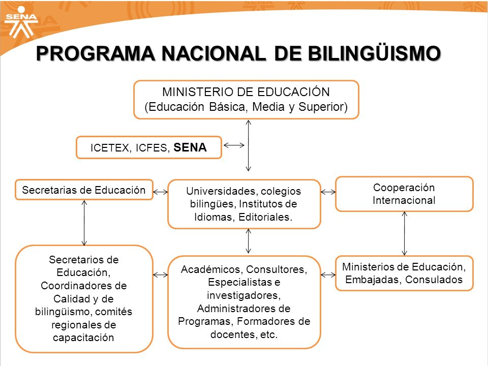MINISTERIO DE EDUCACIÓN (Educación Básica, Media y Superior) ICETEX, ICFES, SENA Secretarias de Educación Universidades, colegios bilingües, Instituto