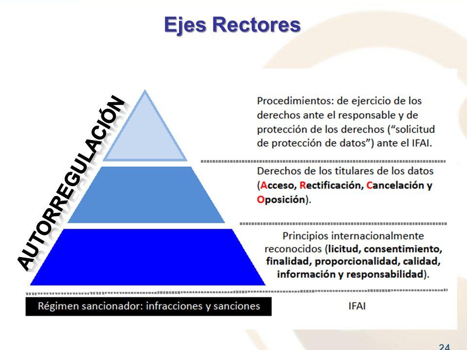 Ejes Rectores 24
