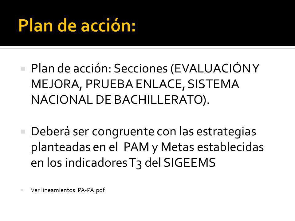 Plan de acción: Secciones (EVALUACIÓN Y MEJORA, PRUEBA ENLACE, SISTEMA NACIONAL DE BACHILLERATO).