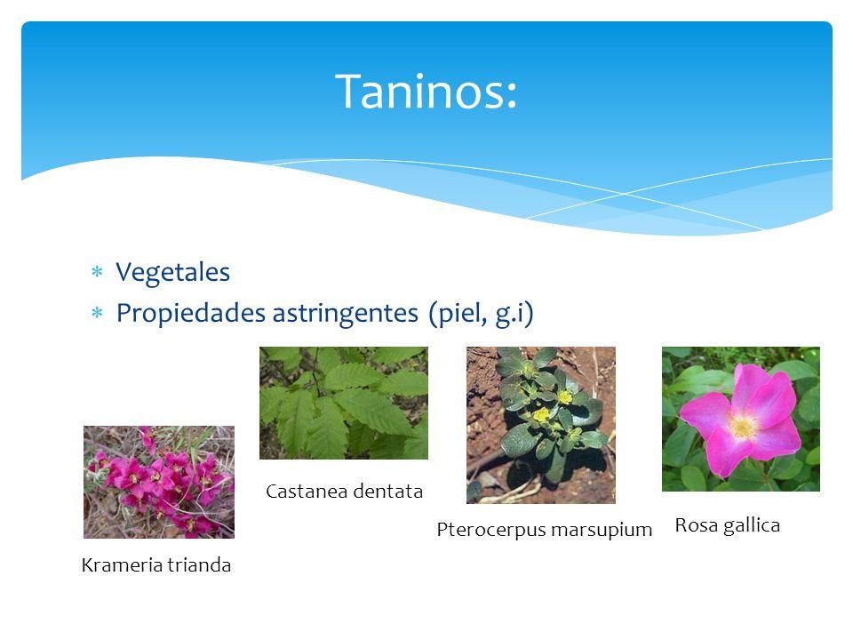 Vegetales Propiedades astringentes (piel, g.i) Taninos: Krameria trianda Castanea dentata Pterocerpus marsupium Rosa gallica