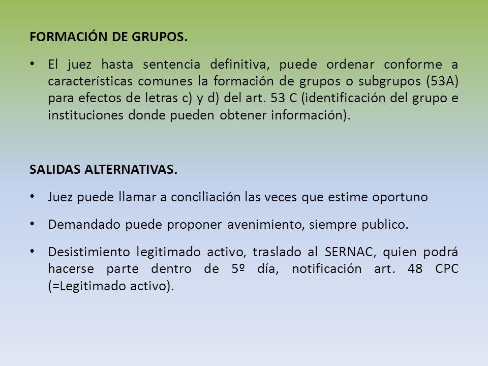 FORMACIÓN DE GRUPOS. El juez hasta sentencia definitiva, puede ordenar conforme a características comunes la formación de grupos o subgrupos (53A) par