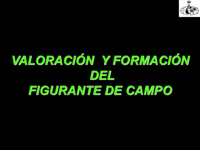 VALORACIÓN Y FORMACIÓN DEL DEL FIGURANTE DE CAMPO