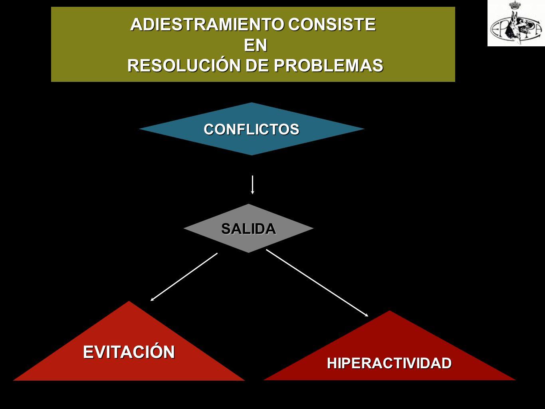 ADIESTRAMIENTO CONSISTE EN EN RESOLUCIÓN DE PROBLEMAS RESOLUCIÓN DE PROBLEMAS CONFLICTOS SALIDA EVITACIÓN HIPERACTIVIDADHIPERACTIVIDAD