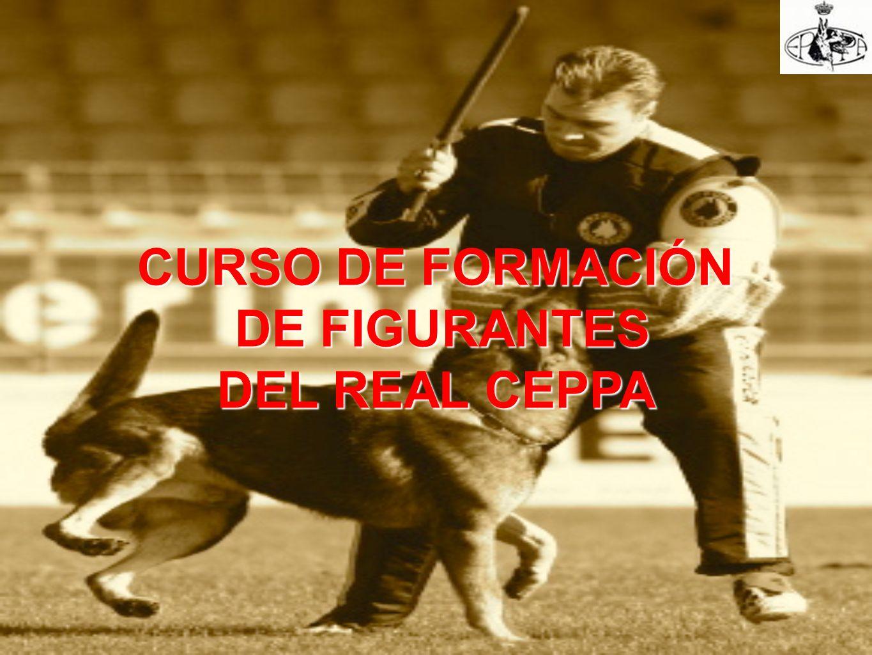 CURSO DE FORMACIÓN DE FIGURANTES DE FIGURANTES DEL REAL CEPPA