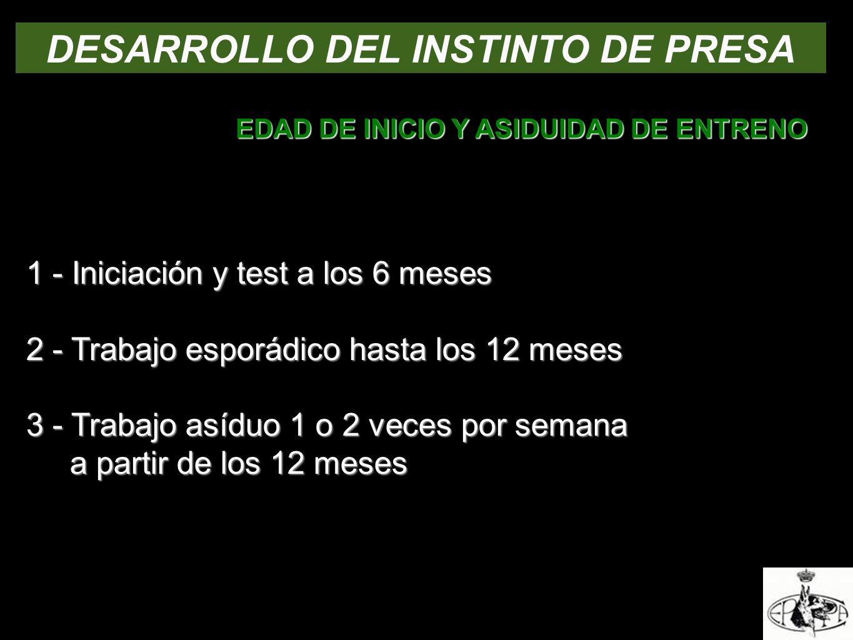 DESARROLLO DEL INSTINTO DE PRESA EDAD DE INICIO Y ASIDUIDAD DE ENTRENO 1 - Iniciación y test a los 6 meses 2 - Trabajo esporádico hasta los 12 meses 3