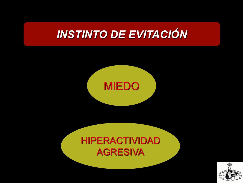 INSTINTO DE EVITACIÓN MIEDO HIPERACTIVIDADAGRESIVA