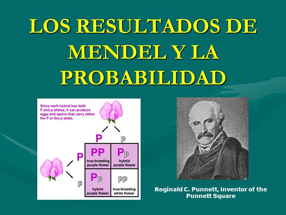 LOS RESULTADOS DE MENDEL Y LA PROBABILIDAD Reginald C. Punnett, inventor of the Punnett Square