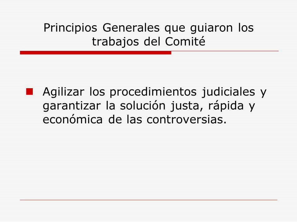 Principios Generales que guiaron los trabajos del Comité Agilizar los procedimientos judiciales y garantizar la solución justa, rápida y económica de