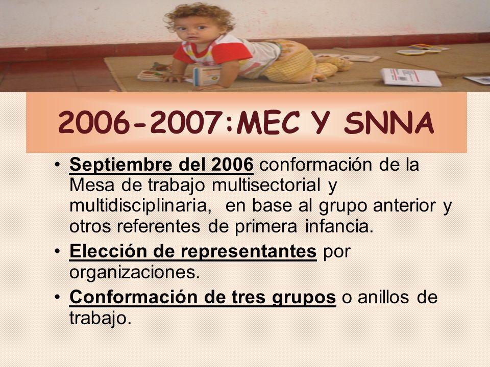 Ejes que orientaron la elaboración Ver al niño y a la niña en su totalidad Desarrollo como PROCESO, reflejado en la redacción con coherencia lógica de los estándares, indicadores y mediciones Enfoque de derechos.