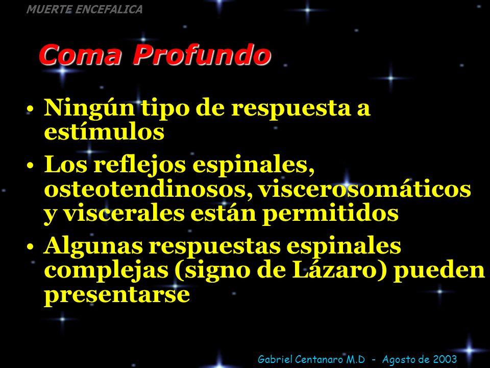 Gabriel Centanaro M.D - Agosto de 2003 MUERTE ENCEFALICA Coma Profundo Ningún tipo de respuesta a estímulos Los reflejos espinales, osteotendinosos, v