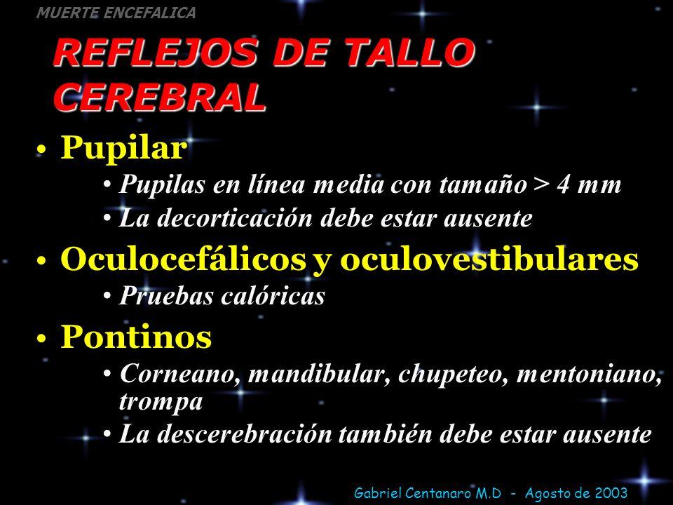 Gabriel Centanaro M.D - Agosto de 2003 MUERTE ENCEFALICA REFLEJOS DE TALLO CEREBRAL Pupilar Pupilas en línea media con tamaño > 4 mm La decorticación