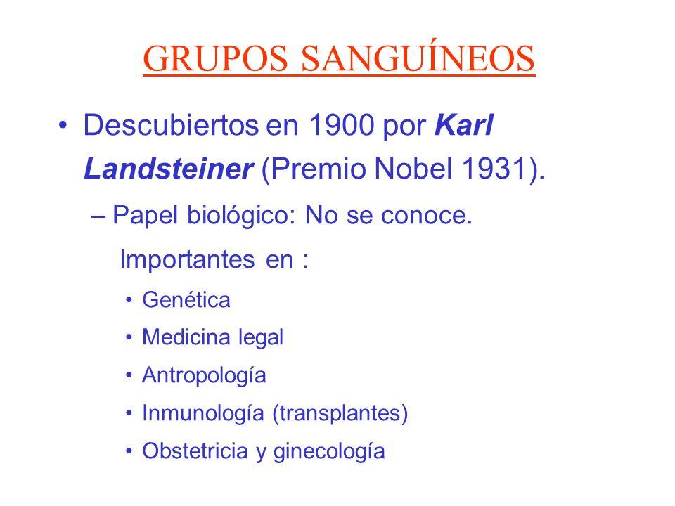 GRUPOS SANGUÍNEOS Descubiertos en 1900 por Karl Landsteiner (Premio Nobel 1931). –Papel biológico: No se conoce. Importantes en : Genética Medicina le