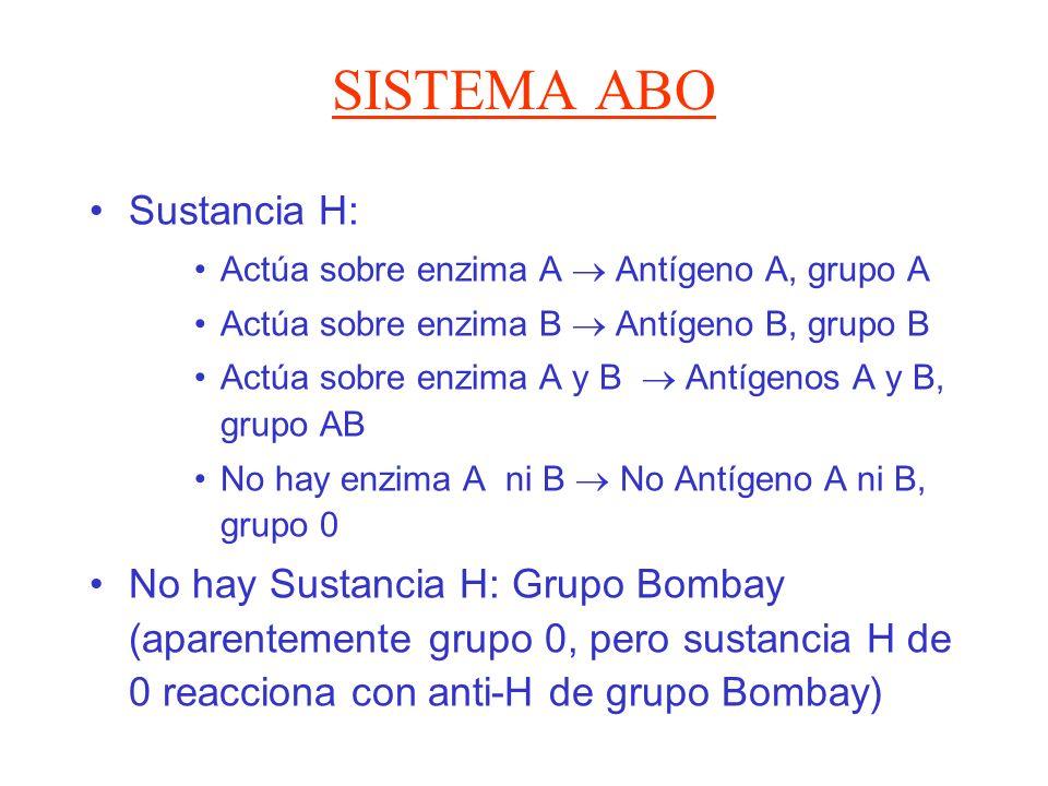 SISTEMA ABO Sustancia H: Actúa sobre enzima A Antígeno A, grupo A Actúa sobre enzima B Antígeno B, grupo B Actúa sobre enzima A y B Antígenos A y B, g