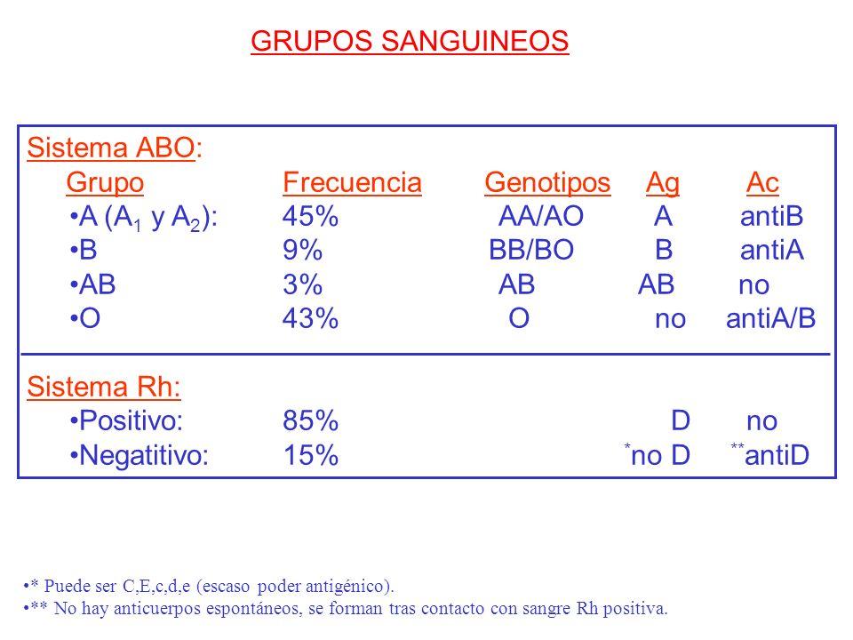 GRUPOS SANGUINEOS Sistema ABO: Grupo Frecuencia Genotipos Ag Ac A (A 1 y A 2 ): 45% AA/AO A antiB B 9% BB/BO B antiA AB 3% AB AB no O 43% O no antiA/B