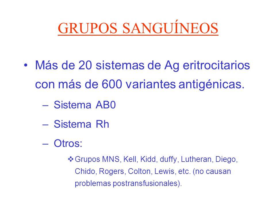 GRUPOS SANGUÍNEOS Más de 20 sistemas de Ag eritrocitarios con más de 600 variantes antigénicas. – Sistema AB0 – Sistema Rh – Otros: Grupos MNS, Kell,