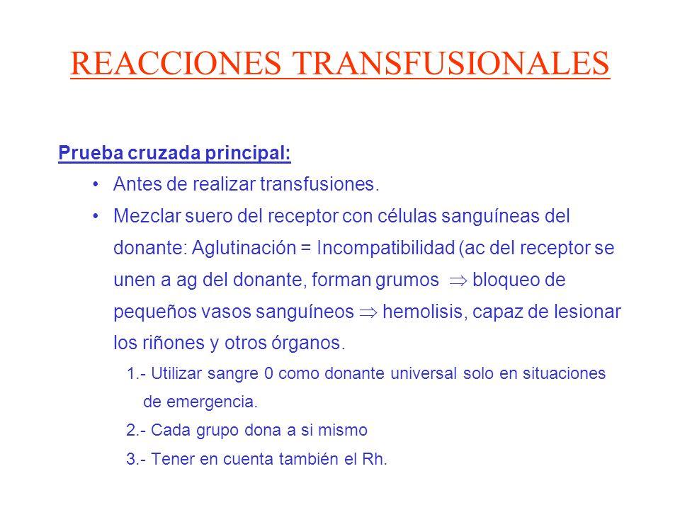 REACCIONES TRANSFUSIONALES Prueba cruzada principal: Antes de realizar transfusiones. Mezclar suero del receptor con células sanguíneas del donante: A
