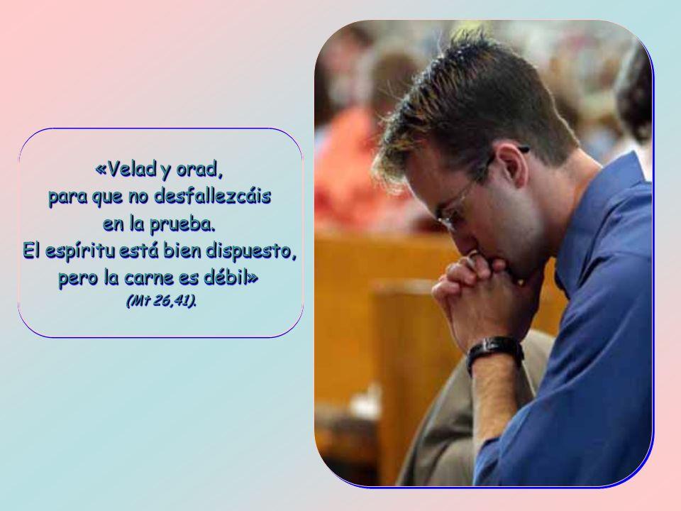 Nota del Secretariado de Catequesis de Santiago de Compostela para el curso 2009-11: Hemos comprendido que nuestra diócesis y el mundo necesita una cura de Evangelio porque sólo la Buena Nueva puede devolverle la vida que le falta.