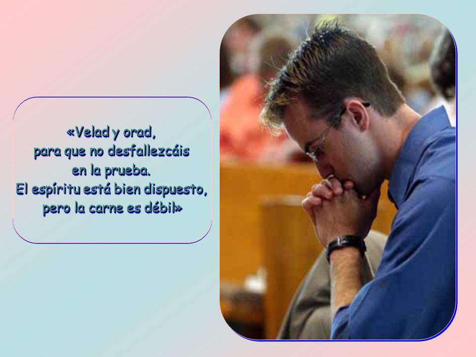«Velad y orad, para que no desfallezcáis en la prueba.