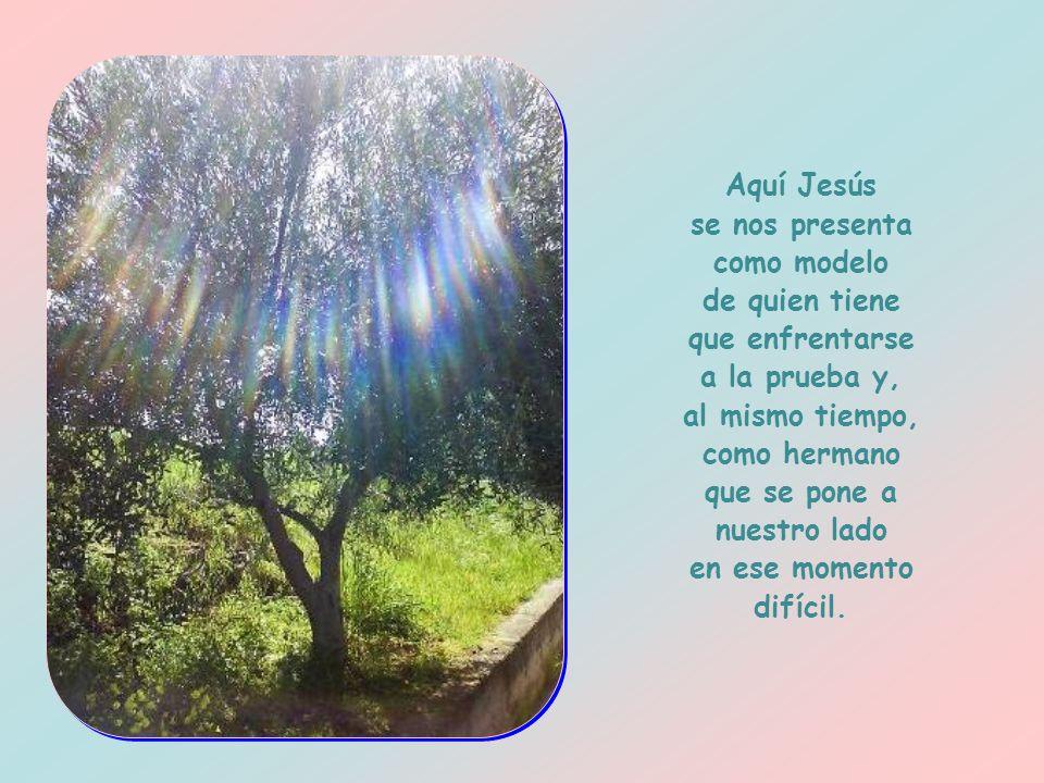 Ante su inminente pasión, Jesús reza con todas las fuerzas de su espíritu, lucha contra el miedo y el terror de la muerte, se abandona al amor del Pad