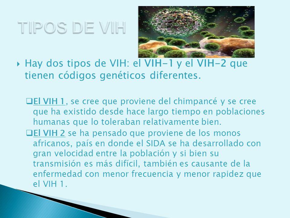 Hay dos tipos de VIH: el VIH-1 y el VIH-2 que tienen códigos genéticos diferentes. El VIH 1, se cree que proviene del chimpancé y se cree que ha exist
