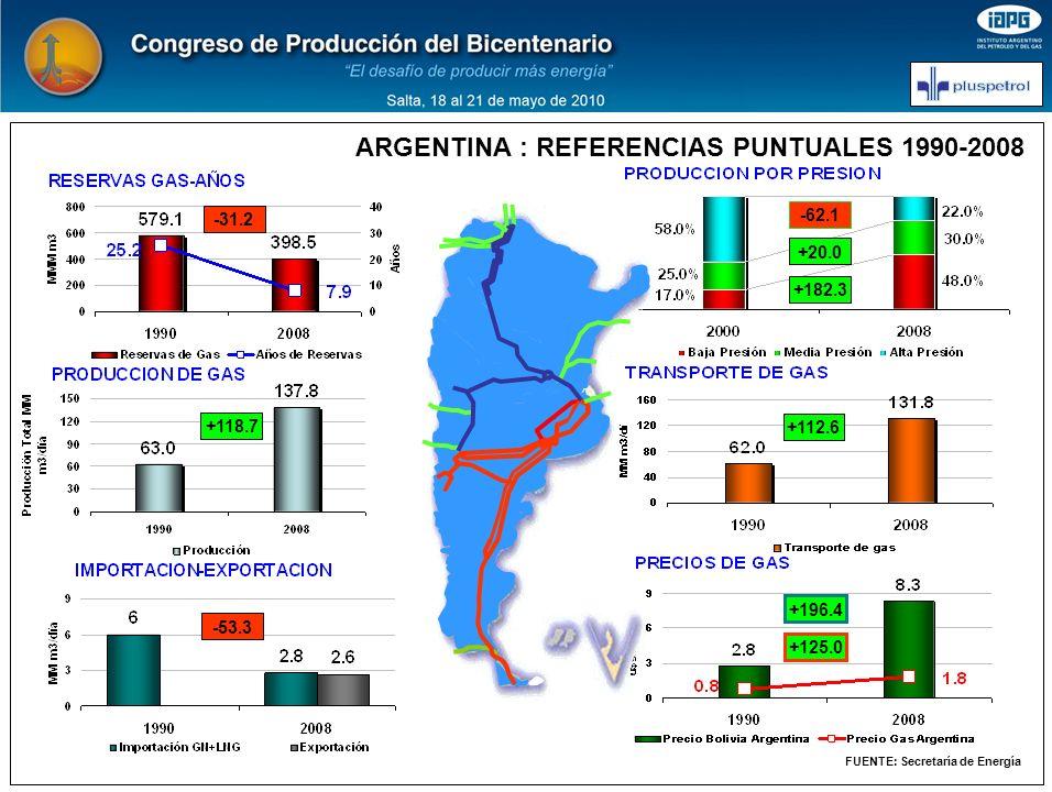 ARGENTINA : REFERENCIAS PUNTUALES 1990-2008 FUENTE: Secretaría de Energía -31.2 -53.3 +118.7 +196.4 +112.6 +182.3 +20.0 -62.1 +125.0