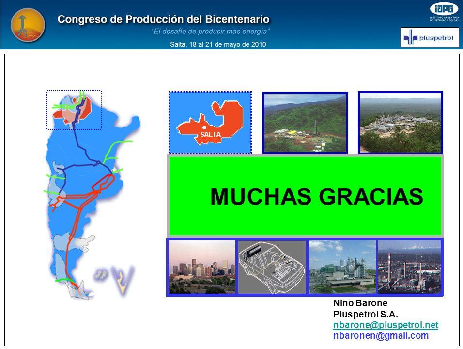 SALTA EL GAS NATURAL EN ARGENTINA 1990-2000 DOS DECADAS DE CAMBIOS Situación Presente y Mediano Plazo MUCHAS GRACIAS Nino Barone Pluspetrol S.A. nbaro